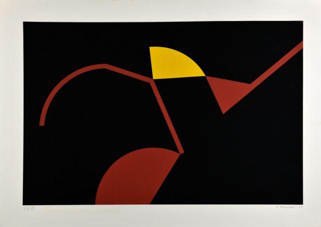 renato-barisani-serigrafia