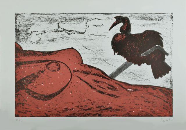 terziani-riccardo-litografia