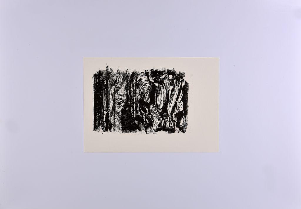 annigoni-pietro-litografia